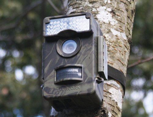 赤外線センサーを搭載しているトレイルカメラは評価が良く、日本語のマニュアルも付いて使いやすい!