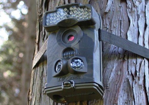 トレイルカメラをはじめ、獣害の対策製品や太陽光発電関連資材も販売