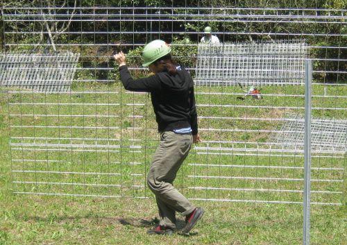フェンス(ワイヤーメッシュ)を上手に設置するポイント~簡単なDIYで獣害対策!~